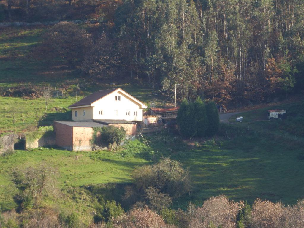 Grigú Ca Tarambana