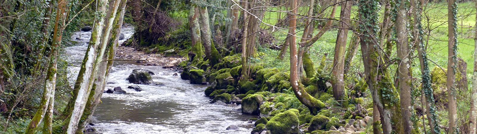 Río Nonaya