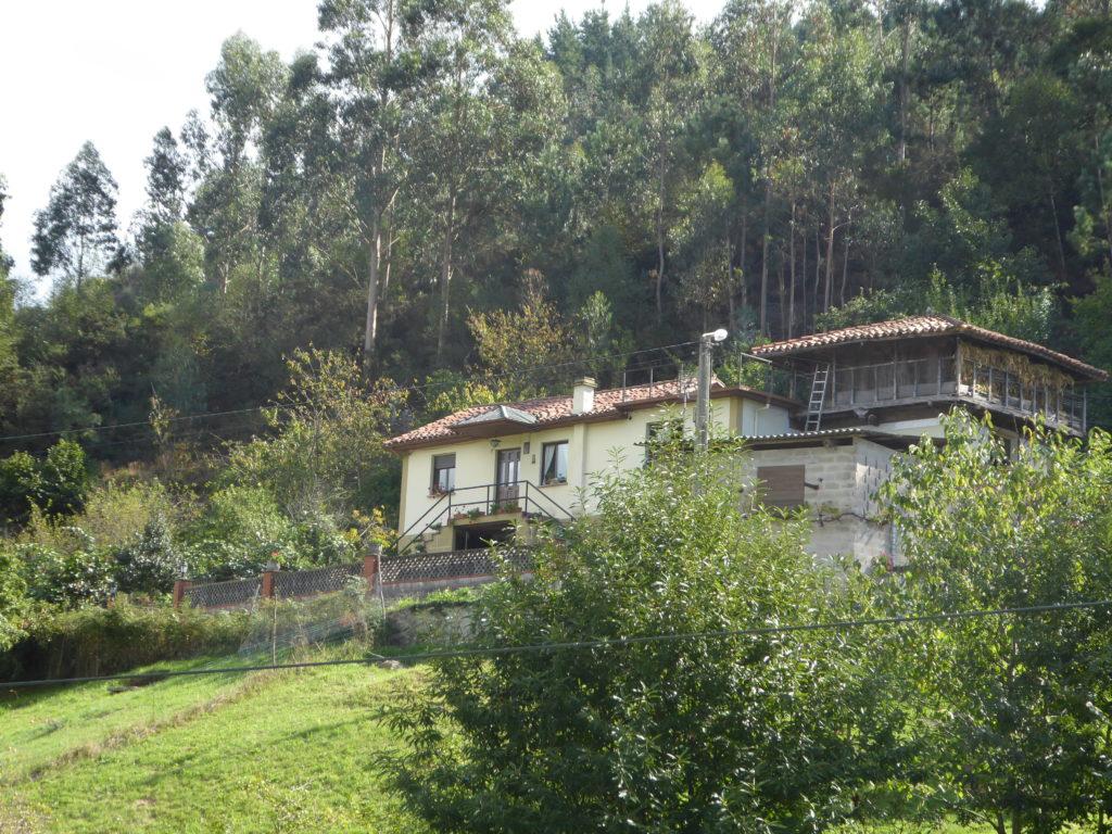 Casa Maria Jose. Llamas.